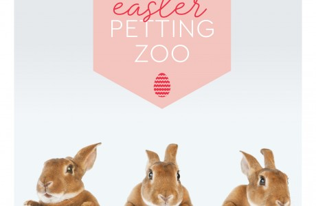 7100_JLL_Summerhill_Easter_2020_Social_1800px120220